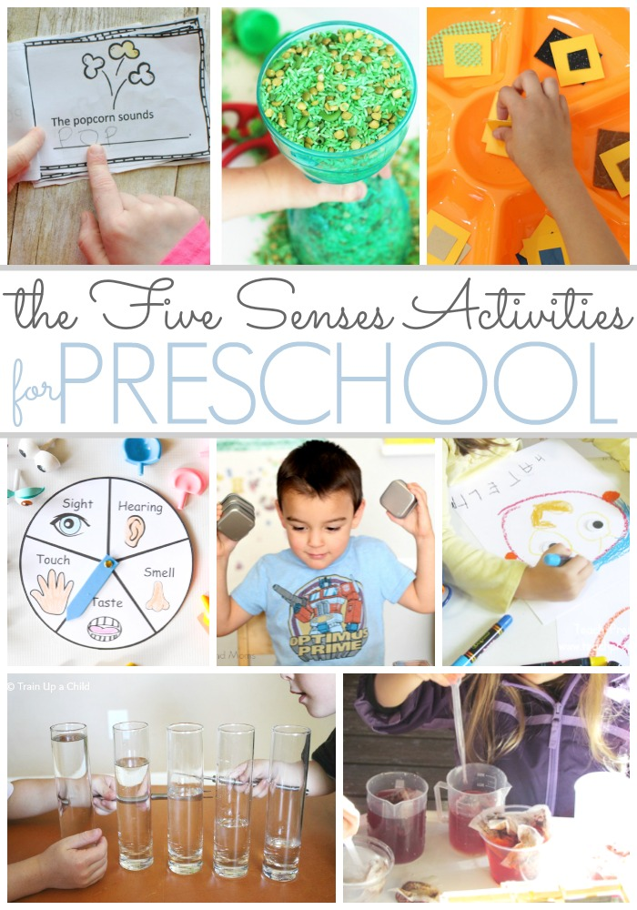 Preschool Activities That Feature the Five Senses - Pre-K ...