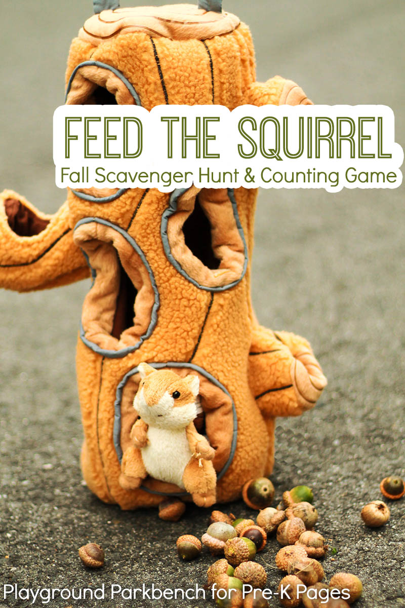 feed squirrel counting game for preschool