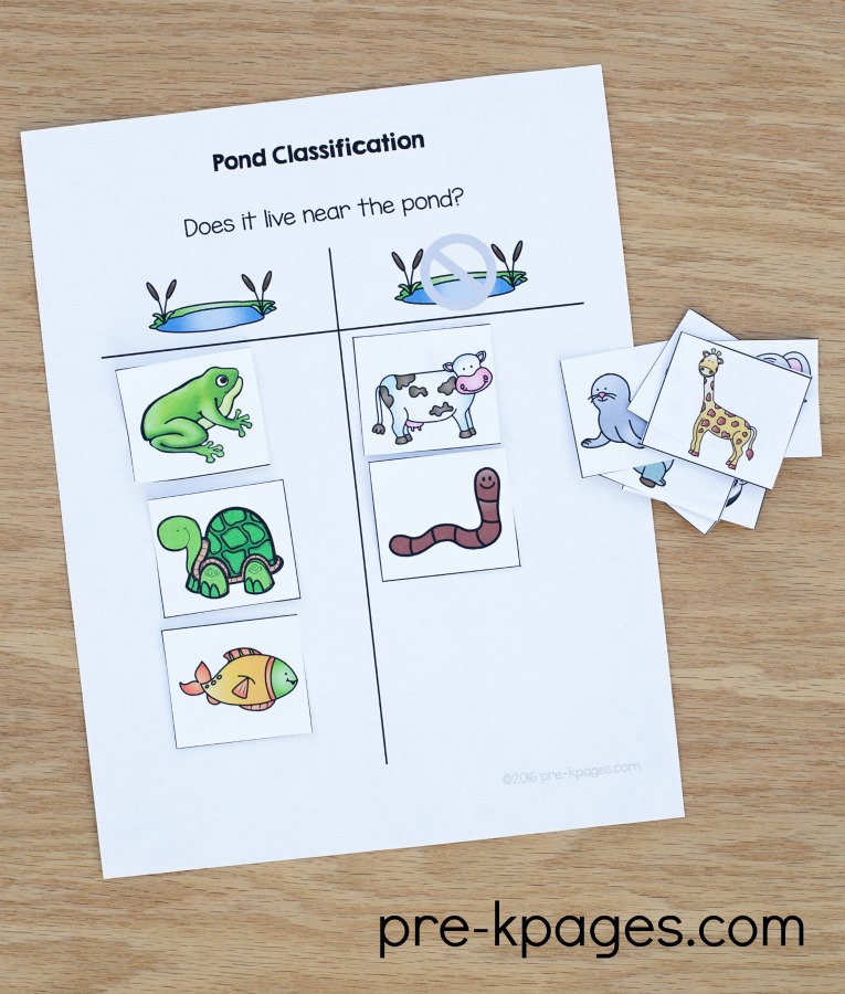 Pond Theme Activities Pre K Pages
