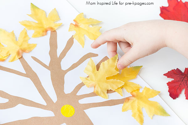 trees leaves fall math activity