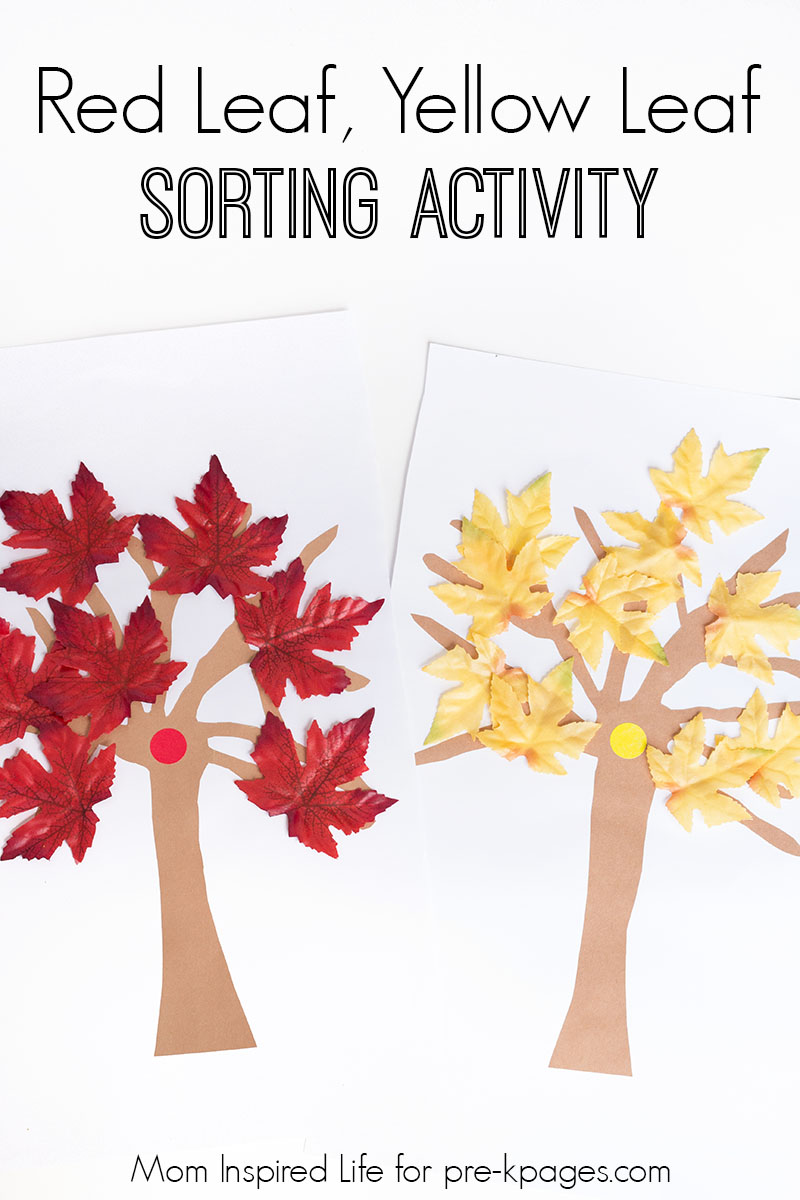 Red leaf yellow leaf fall sorting activity