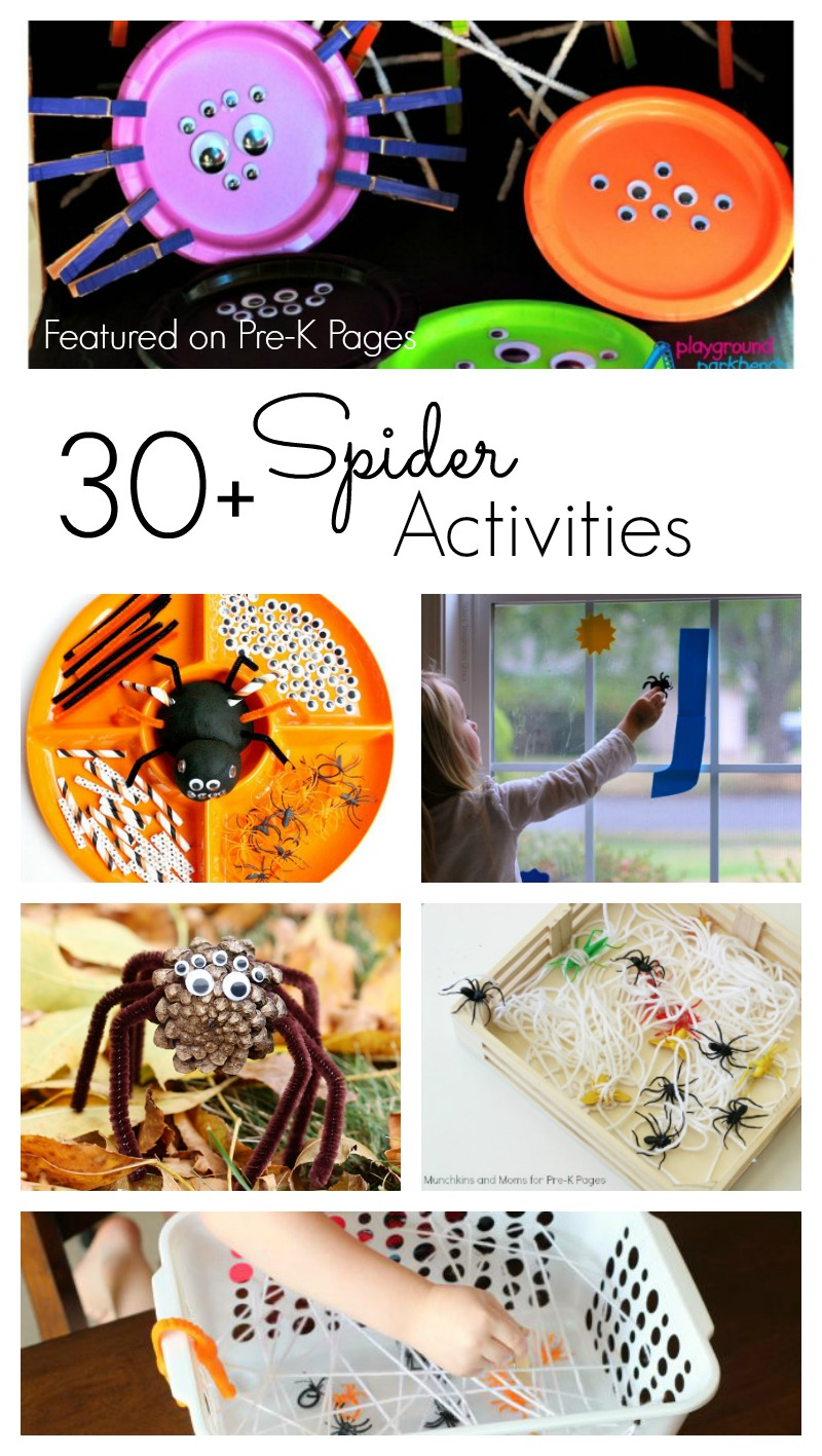 30 Spider Activities For Preschool Perfect For Fall Or Halloween