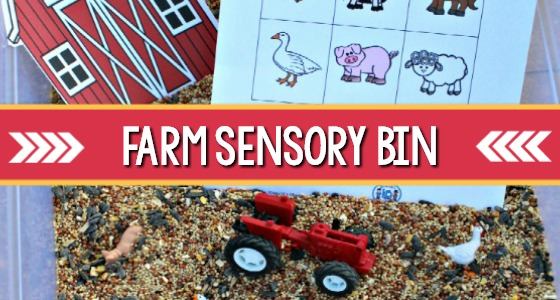 Farm Theme Sensory Bin for Preschoolers