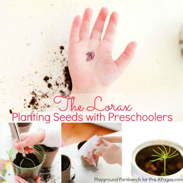 planting seeds preschool the lorax
