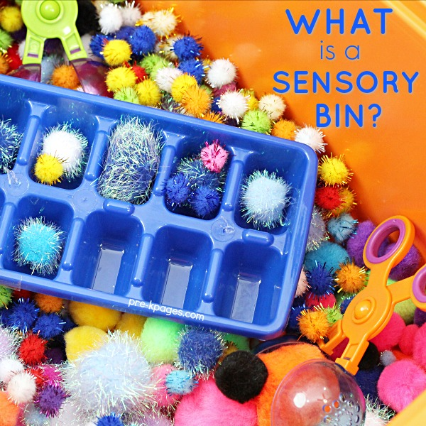 What is a Sensory Bin and Why Should You Have One for Your Preschool Classroom?