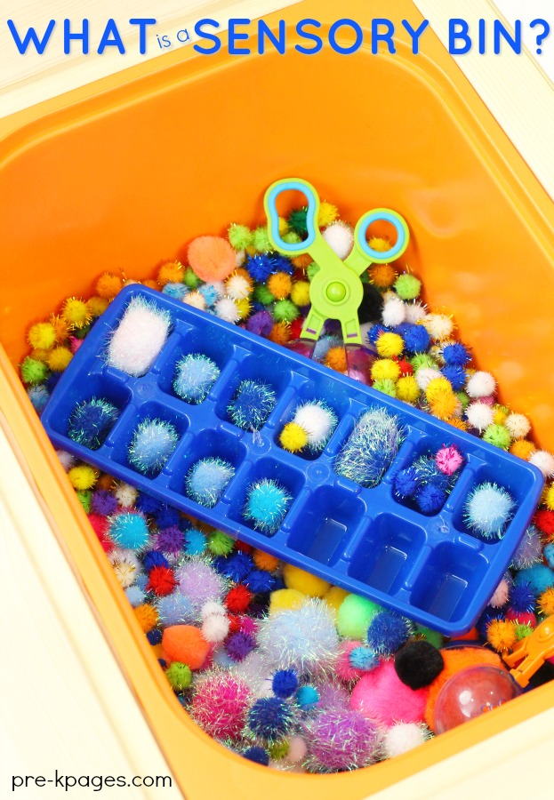Benefits of Sensory Bins in Preschool