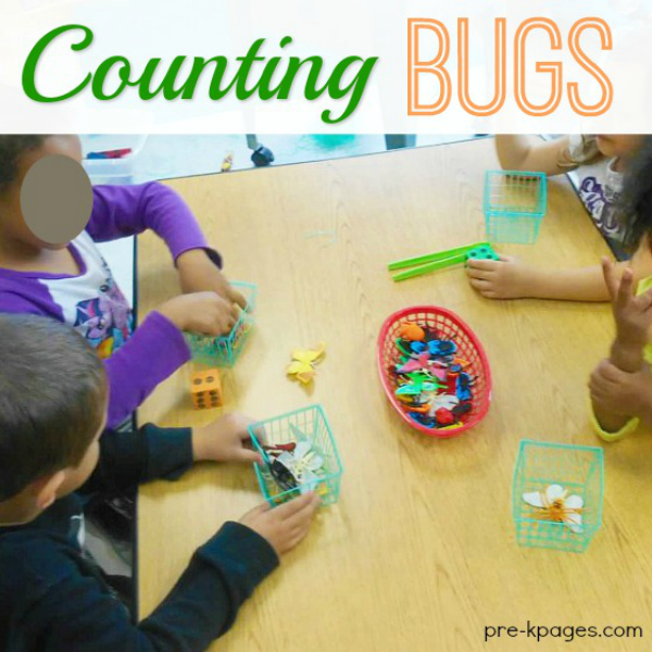 Bug Counting Activity for Preschool