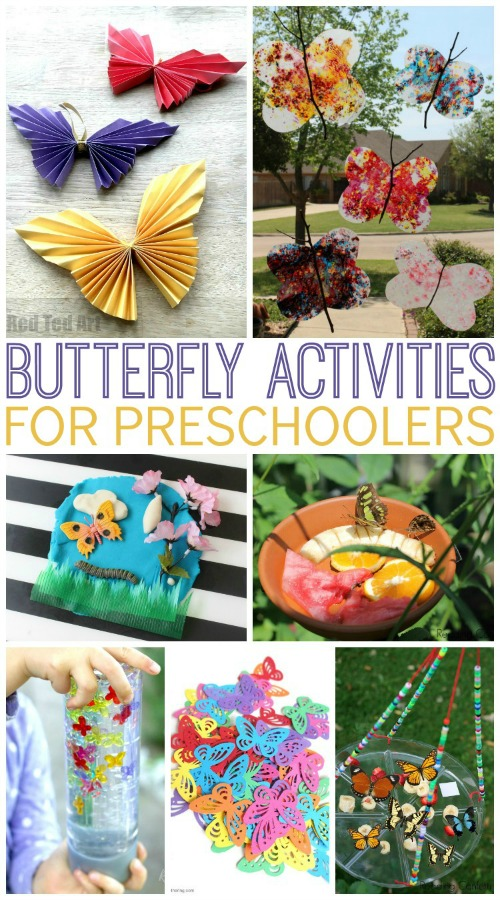 Butterflies Theme Activities for Preschool