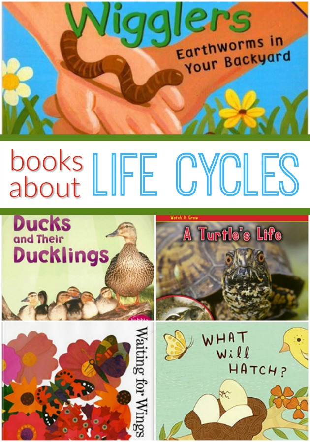 Books About Life Cycles for Preschoolers