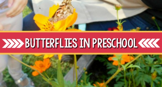 Hatching Butterflies in Preschool
