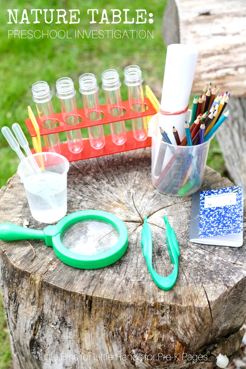 science table nature investigation preschool pre activities learning outside outdoor lesson plans