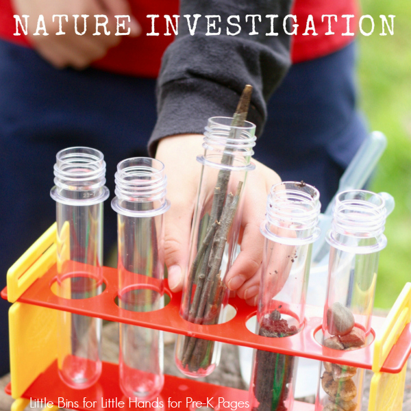 nature table outdoor science for preschool