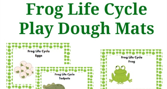 Frog Life Cycle Play Dough Activity