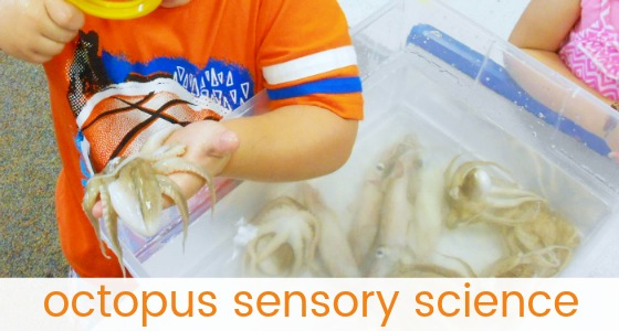 Octopus Sensory Bin for Preschool