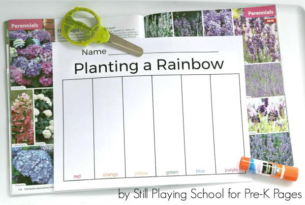 rainbow color garden kindergarten