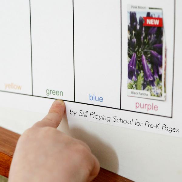 preschool color words