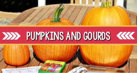 8 Pumpkin Activities For Preschool