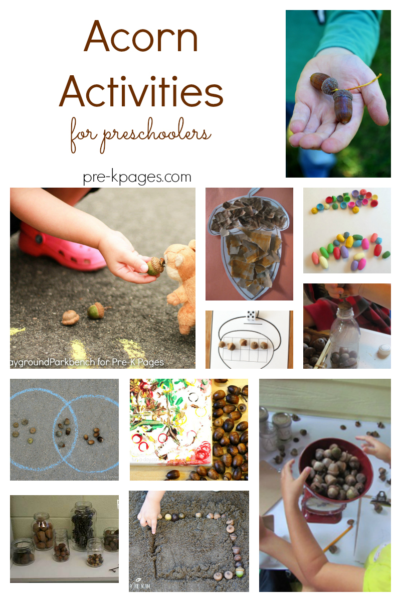 acorn activities for preschool