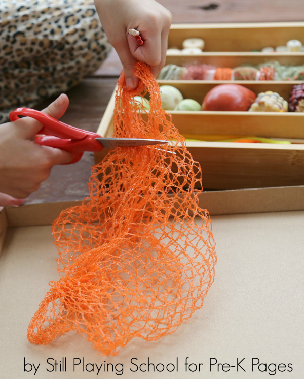 scissors cutting netting