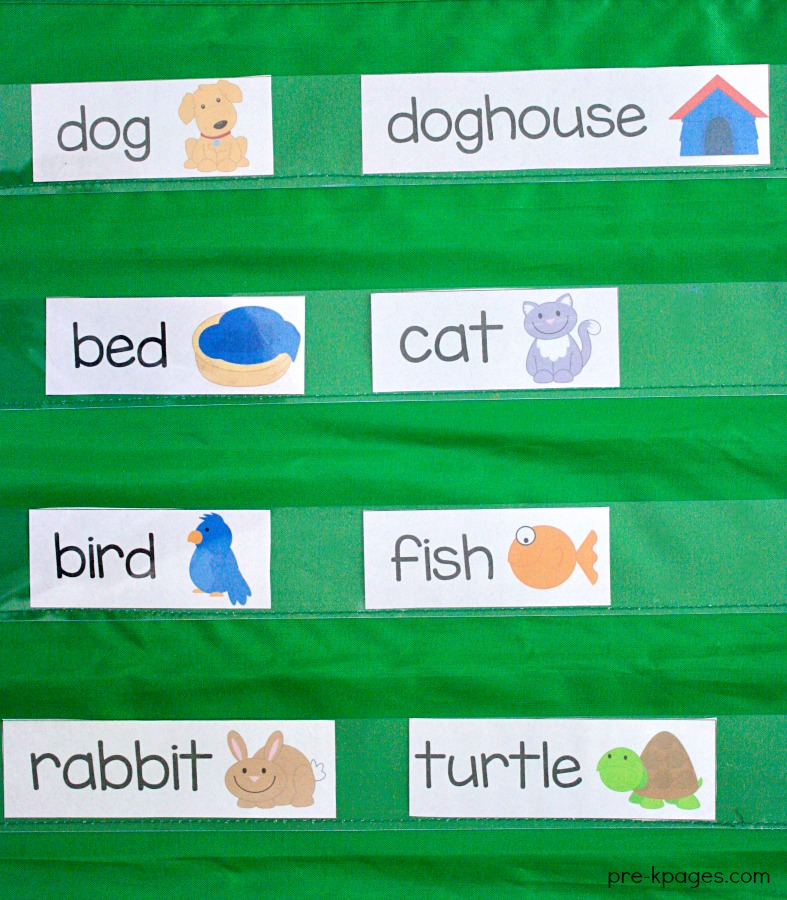 Pet Theme Printable Word Wall Cards
