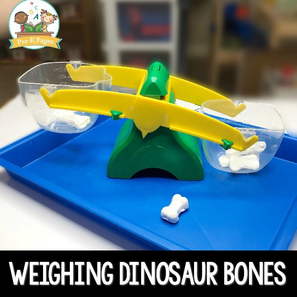 Weighing Dinosaur Bones