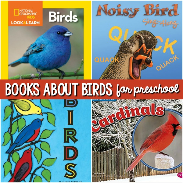 Bird Books for Preschoolers