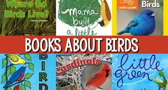 20 Bird Books For Kids