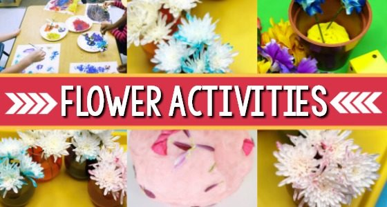 30+ Flower Activities for Preschool