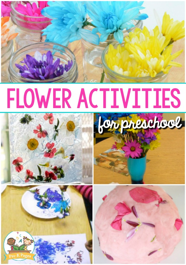 Flower Activities for Preschool