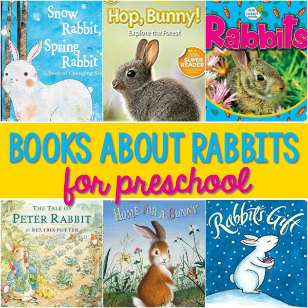 Rabbit Books for Preschoolers