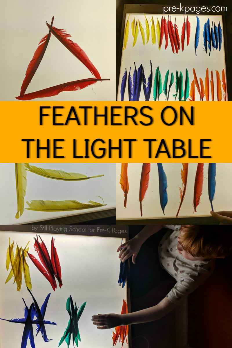 feathers on light table preschool