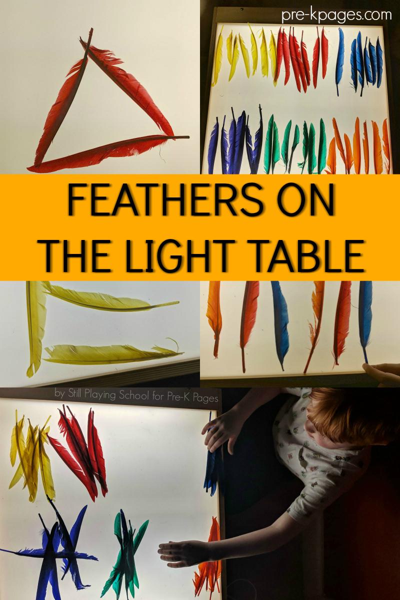 feathers on light table preschool