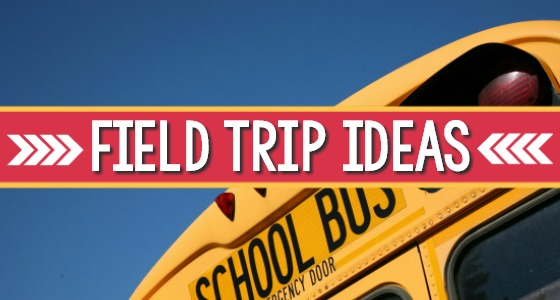 Field Trip Ideas For Preschool And Kindergarten