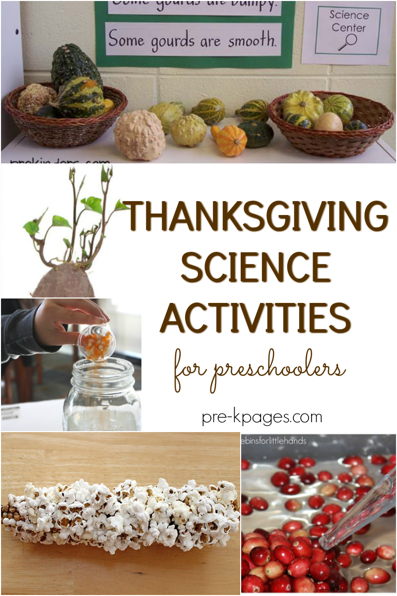 Thanksgiving Science Activities For Preschoolers Pre K Pages