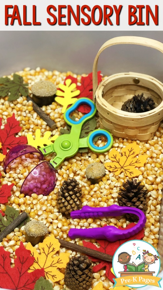 Fall Sensory Bin for Preschool