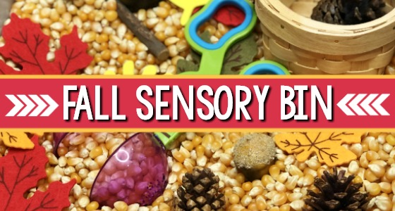 Fall Sensory Bin for Preschool Sensory Play