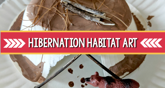Hibernation Habitat Process Art