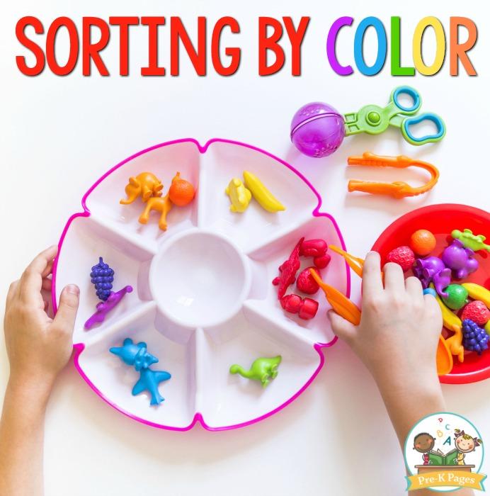 Sorting by Color in Preschool