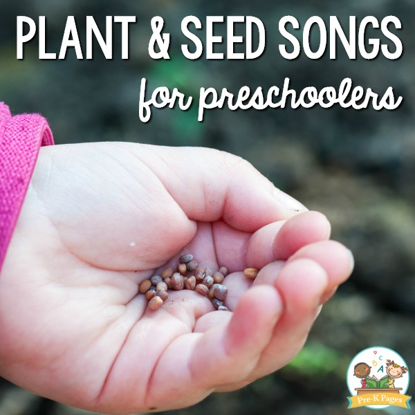 Plant and Seed Songs for Preschool