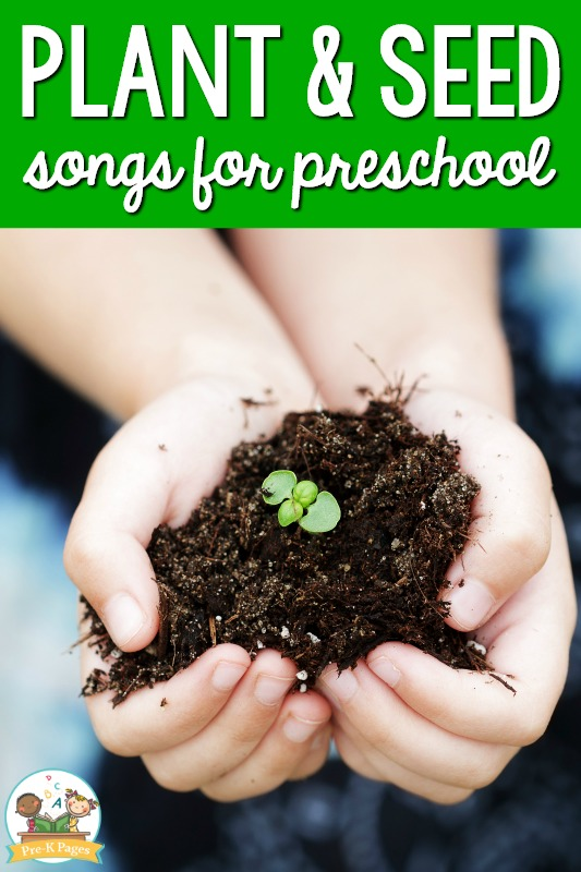 Plants and Seeds Songs for Preschool