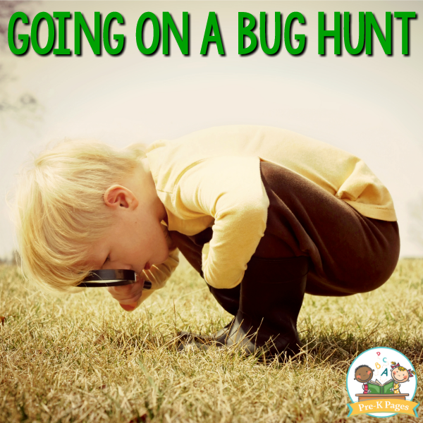 Going on a Bug Hunt with Kids