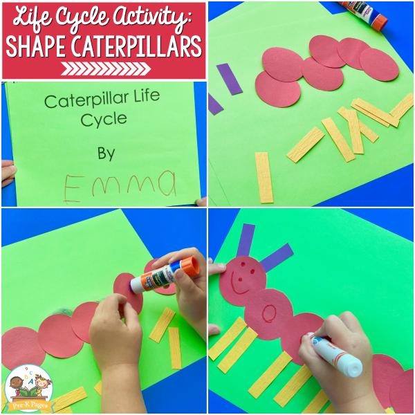 life cycle butterfly preschool