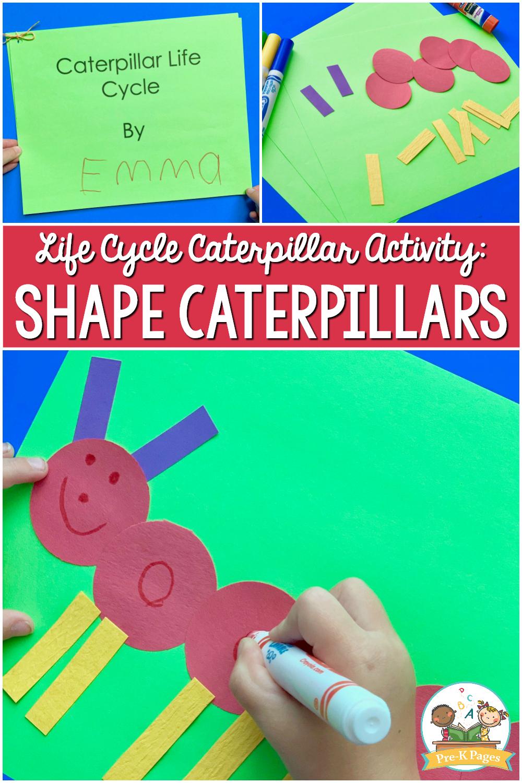 Life cycle caterpillar activity shape caterpillar for preschool