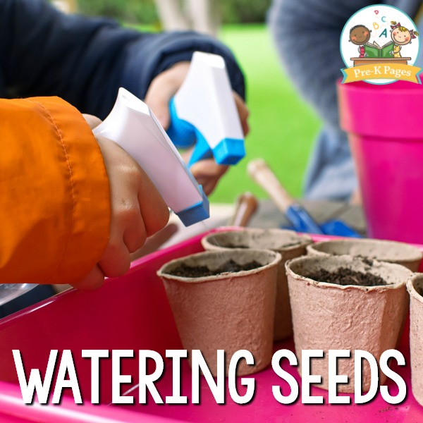 Watering Plant Seeds in Preschool