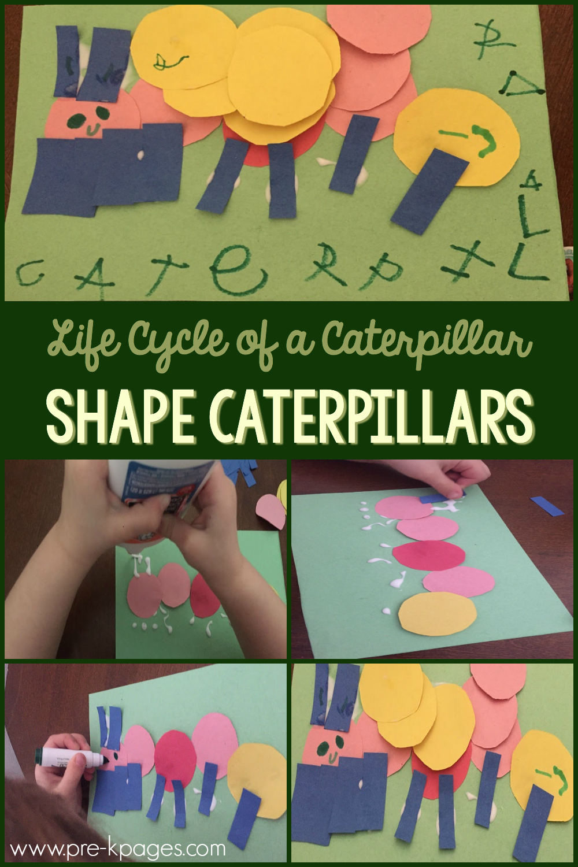 caterpillar life cycle art for preschoolers