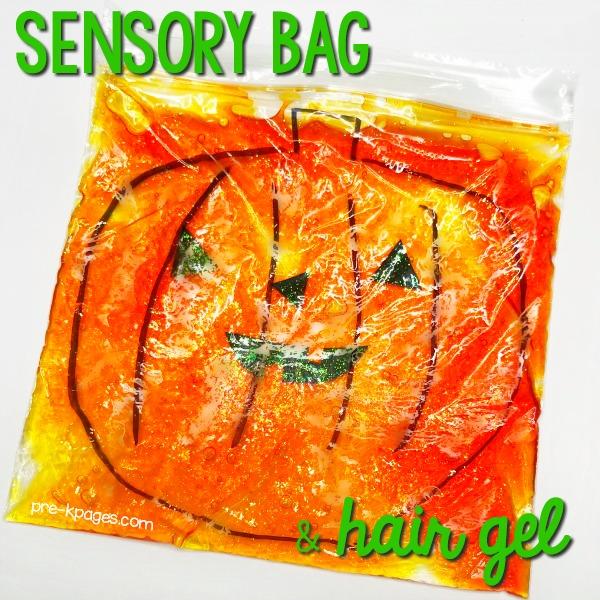 Sensory Bag with Hair Gel