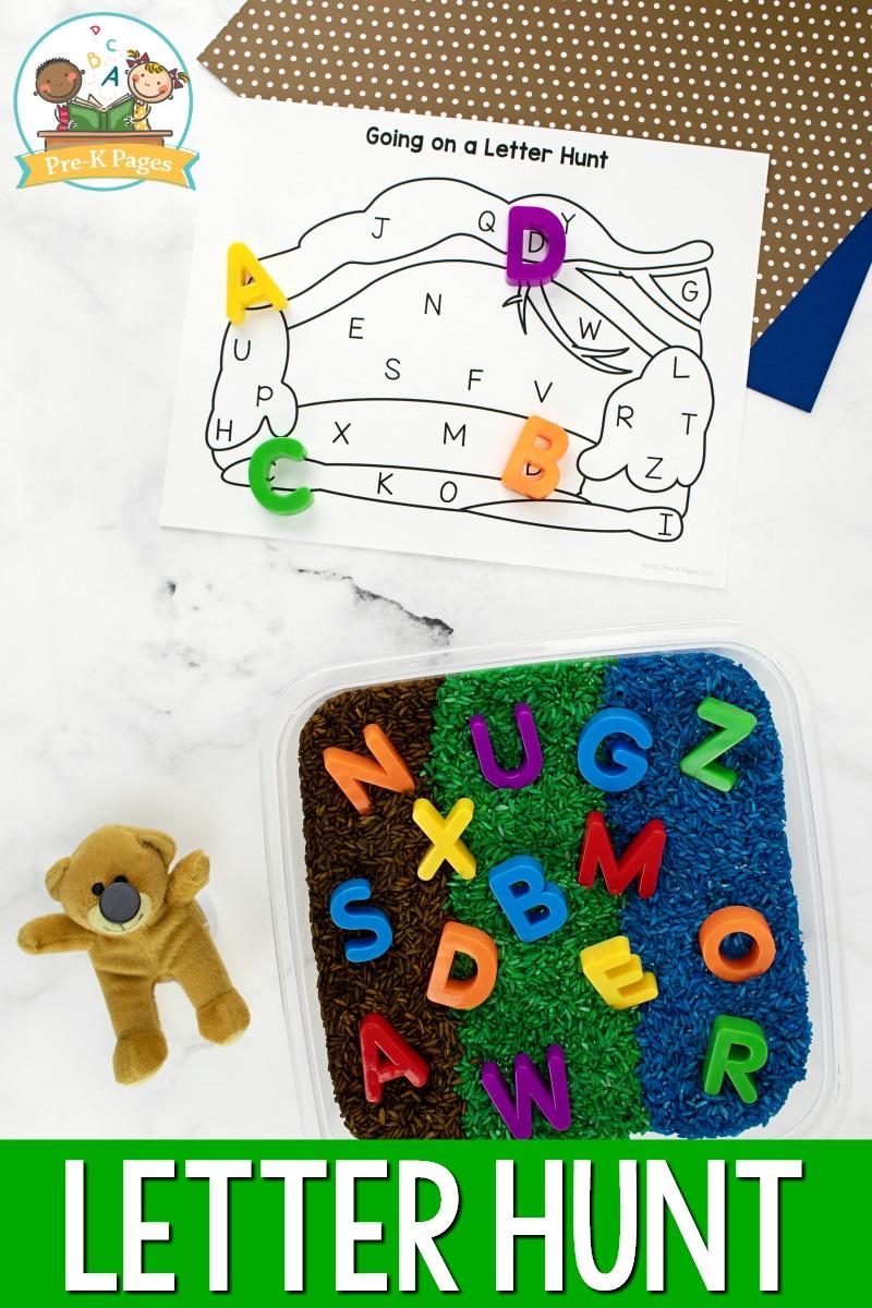 Alphabet Letter Hunt Activity