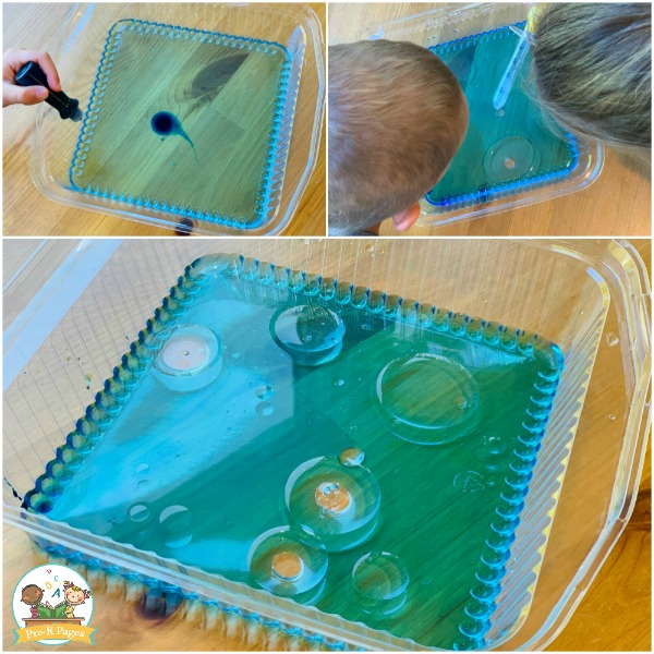 oil and water experiment preschool