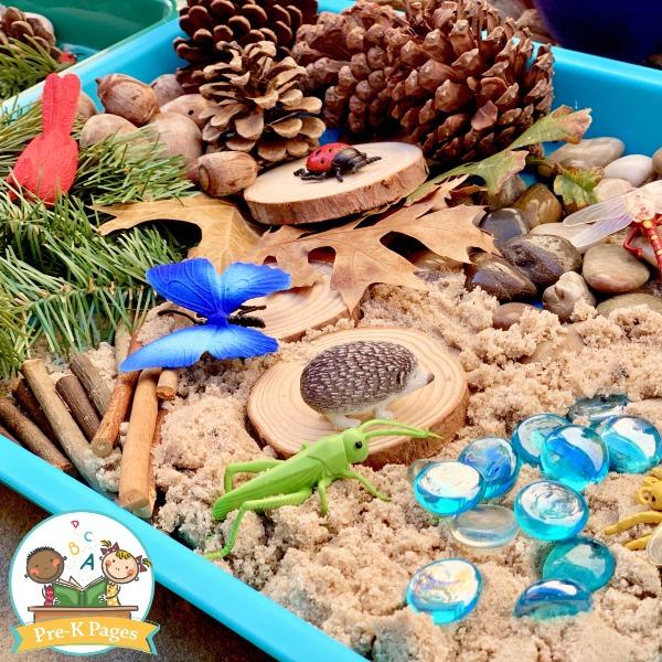 Forest Sensory Bin for Preschool