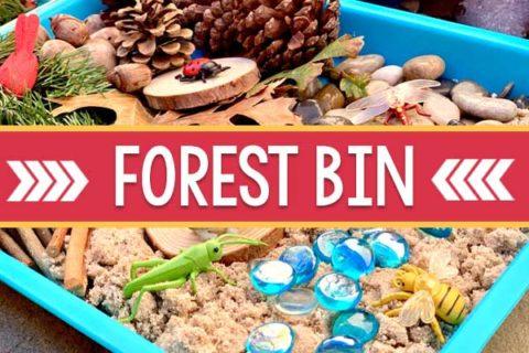 Forest Sensory Bin